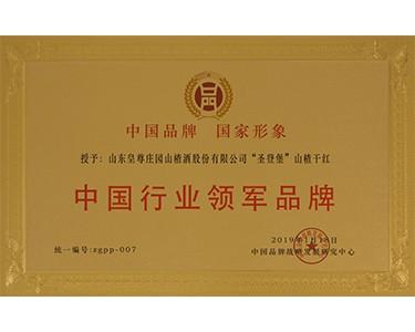 中国行业领军品牌