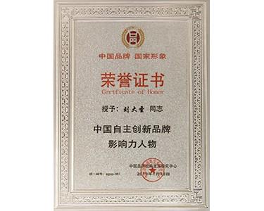 中国自主创新品牌影响力人物证书(刘大圣)